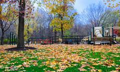 Playground-Chagrin River Park