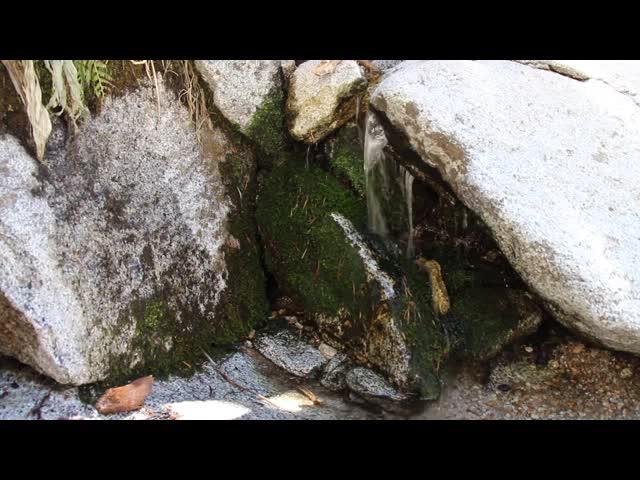 236 Video of Water flowing at the Bed Springs Crossing on the Deer Springs Trail