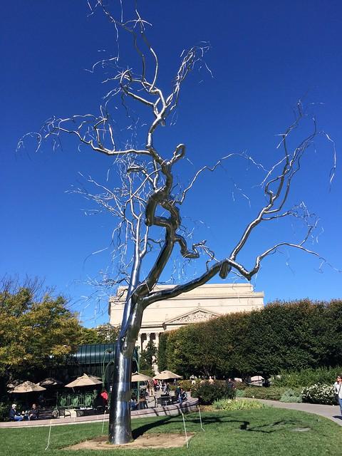 Graft, National Gallery of Art Sculpture Garden
