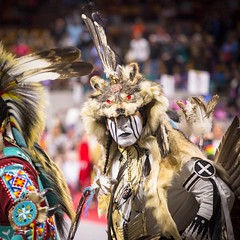 I like this guy's style. Traditional Dancers sometimes wear skins to honor the different animals put on Earth. As one of the oldest dances this regalia can also symbolize a war story or hunting expedition. #denvermarchpowwow #powwow #dance #ceremony #fest