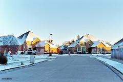 My Brother's Neighborhood, Sachse, 2004