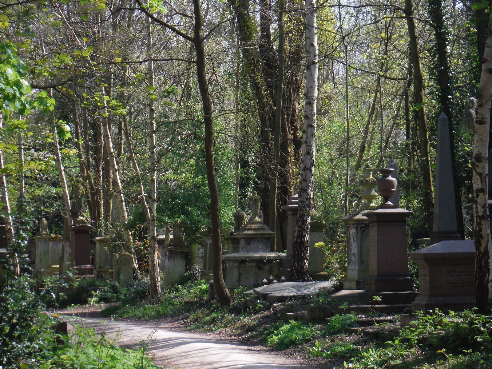 Abney Park Cemetery (VI) SWC Short Walk 26 - Woodberry Wetlands (Stoke Newington Reservoirs)