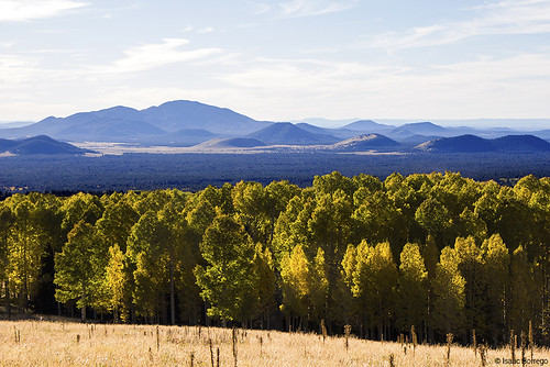 fall autumn mountains hills meadow cloud sky aspens trees forest flagstaff arizona canonrebelt4i unitedstates america