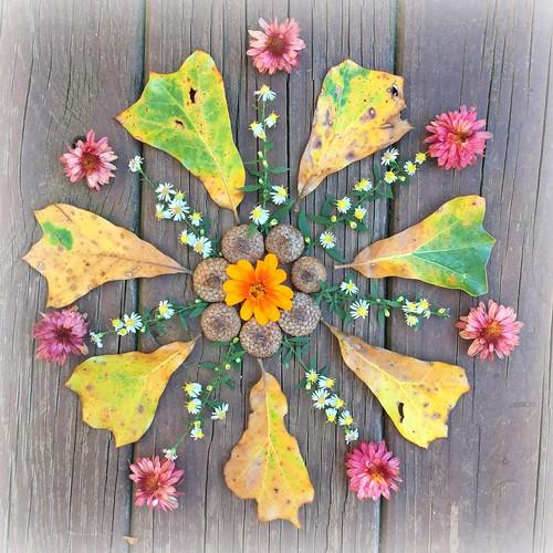 Spring In Autumn Mandala