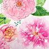 ...a close up of the birthday card - just painted :) #pink #pinkflowers #ced2014 #arteveryday #birthdayflowers #weddinginvitation #weddingdesign #girly #flowers #ranunculus #pfingstrose #ranunkel #green #watercolor