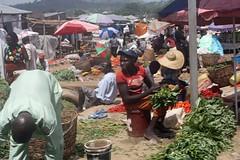 Madala Market