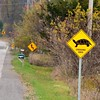 Oct 25 - 'y' is for yield {lots of 'yield' signs around my neck of the woods} #fmsphotoaday #yield #turtlecrossing #CtyRd17 #curvyroad #princeedwardcounty
