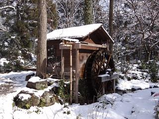 Winter Wonderland Redux