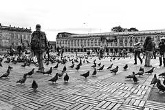 Town Square, Bogota