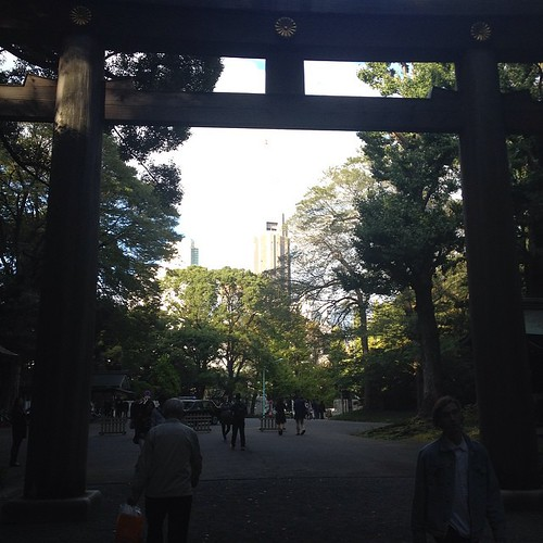 Yoyogi Park -- contrast of modern skyscrapers and the lush forest of the park.