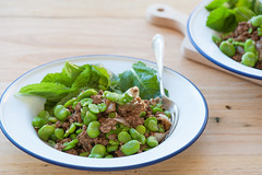beef & broad beans