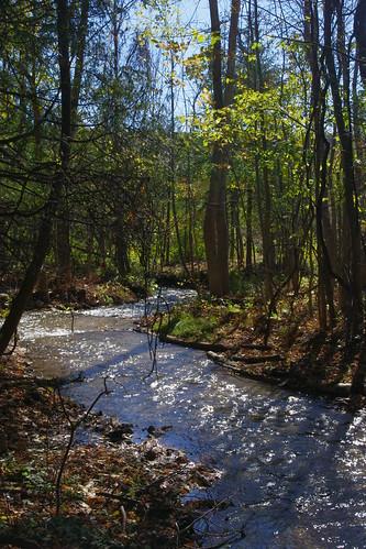 autumn ontario fall river autumnal terranova terranovaontario