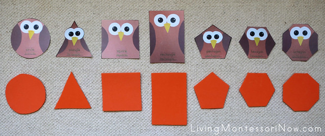 Owl Shape Matching Layout