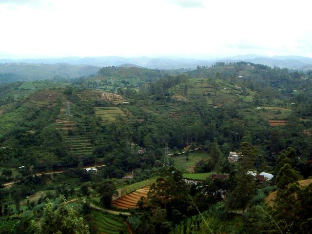 Near Welimada