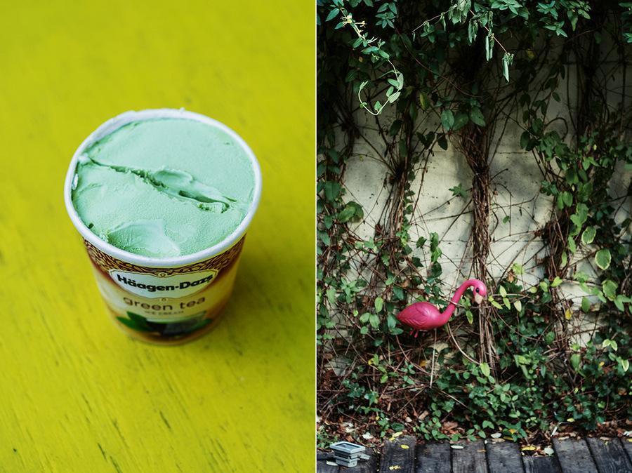 haagen-dazs green tea
