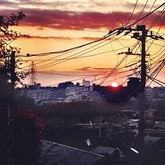 通勤時に朝陽が見られる季節になった。