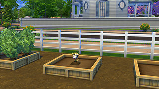 cowplant the sims 4 4