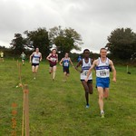 2014-star-of-the-sea-xc-stamullen-052