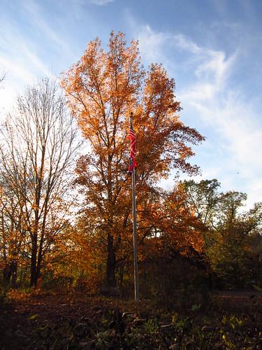 Autumn Flagpole
