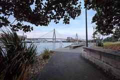 Discovering the ANZAC Bridge 3