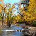 Boulder Creek by Sandra Leidholdt (away)