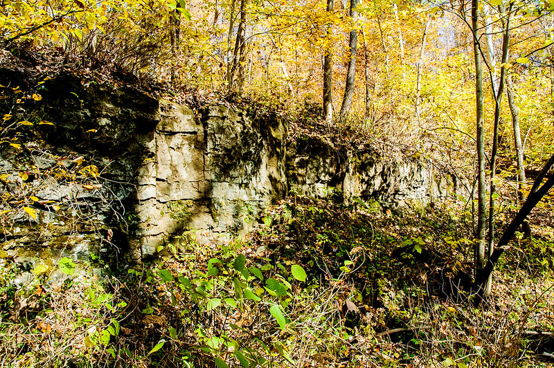 Pennywort Cliffs Nature Preserve