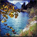 Herbstfarben by Ulla M.