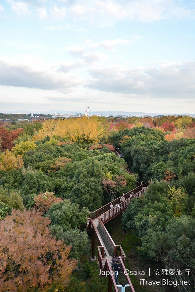 大阪赏枫 万博纪念公园 红叶庭园 30
