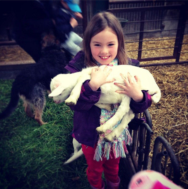 Kids (human and goat)