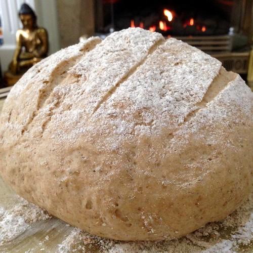 Second Proving. Spelt bread. Bread.