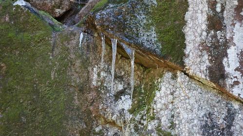 forest suomi finland sony snapshot trail virrat metsä luontopolku nex3 näpsy