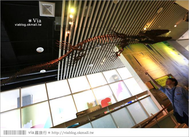 【台南南科景點】樹谷生活科學館~超大的劍齒象化石!有趣又能長知識的博物館!11
