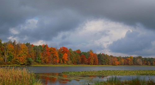 autumn trees ohio sky lake nature water beauty clouds october seasonal shoreline stormy autumnleaves brooding waterlillies darkclouds 2014 colorfulleaves portagecountyohio mogadoreohio