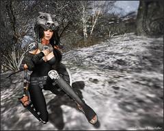 Tigris Armor 1_01