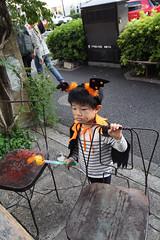 ハロウィンとらちゃん 2014/10
