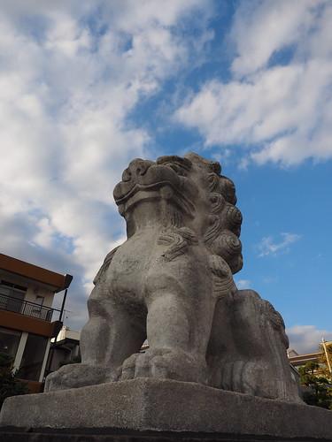 鶴岡八幡宮 狛犬