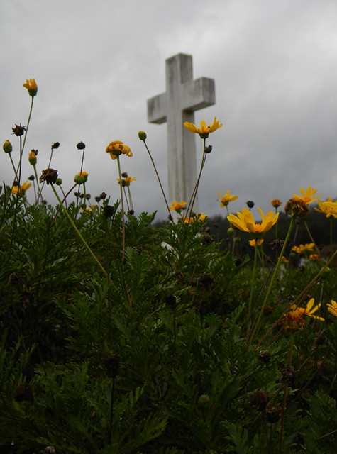 Cross with yellow flowers in a cemetery in the small village of San Martin de Mondoñedo in Spain