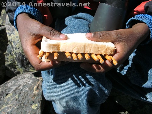 Lunch on the trail - he said he wanted a peanut butter and pretzel sandwich...