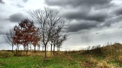 Ciel morne d'automne