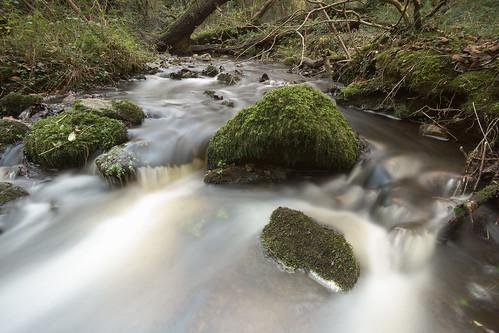 gower penrice millwoodstream