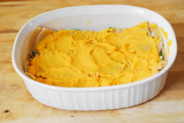 Spread more butternut squash puree over the lasagna noodles