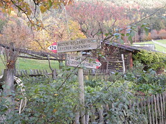 torgele - seit - pineta di laives - bolzano