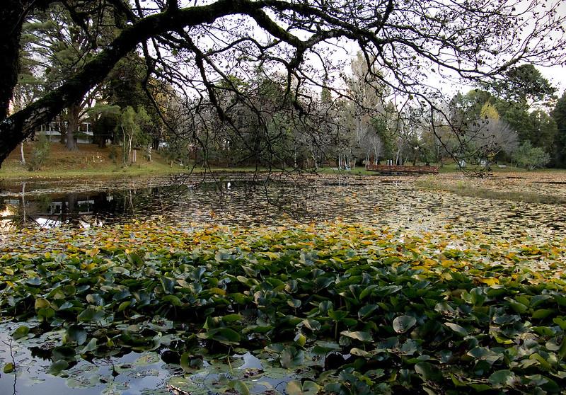 Parque Saval 18