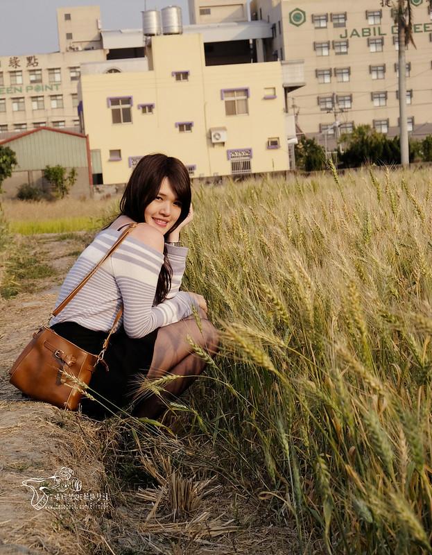 泰安大雅 (35)