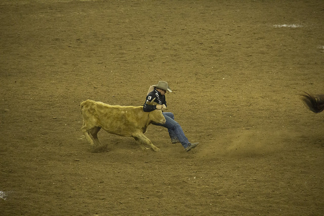 Rodeo and Concert2_48