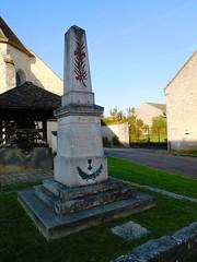 91-La Forêt Sainte Croix*