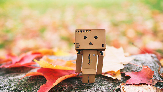 Autumn Danbo