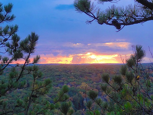 trees sunset fall colors pine clouds foliage