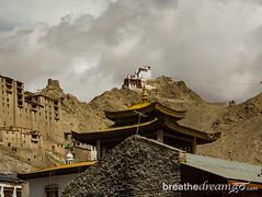 Ladakh Leh castle