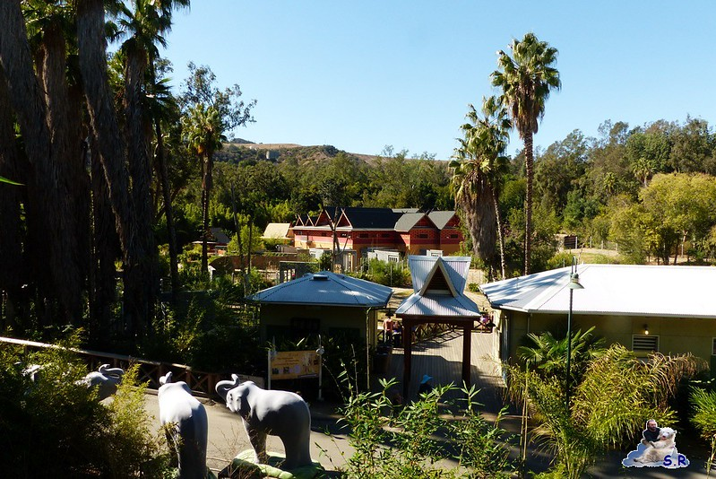 Los Angeles Zoo 18